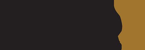 dandy salon logo